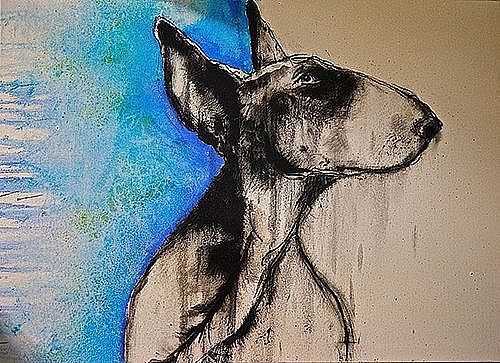 Bull Terrier With Blue