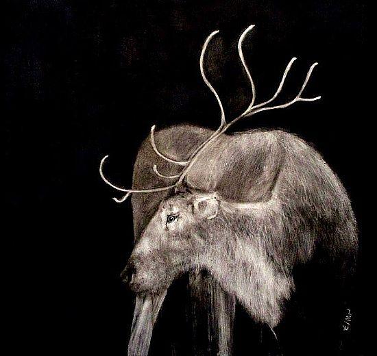 View Reindeer