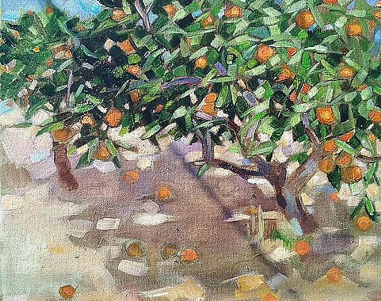 View Mr kostas' orange tree