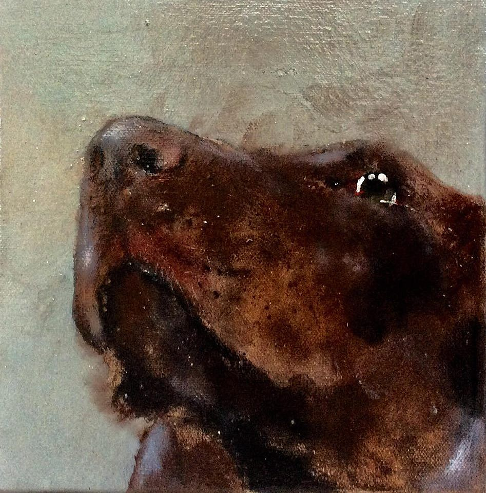 Brown Dog small by Heidi  Wickham