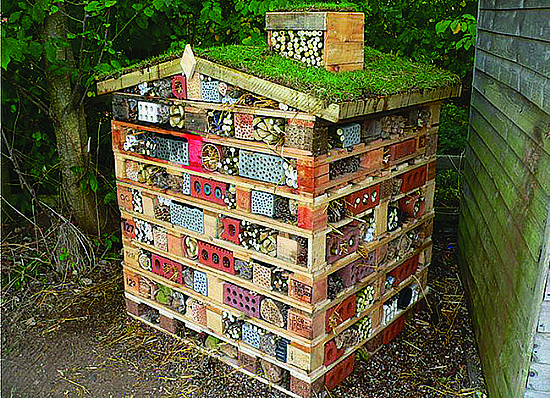 View Build a Bug Hotel