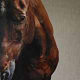 �A Dark Horse� solo show by Tony O�Connor 2012