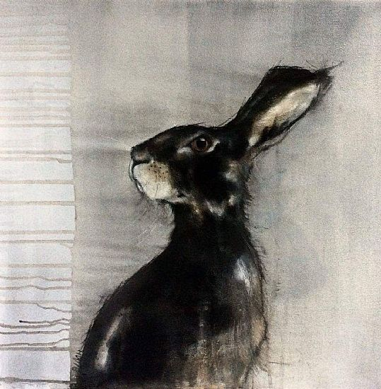 View Grey Hare