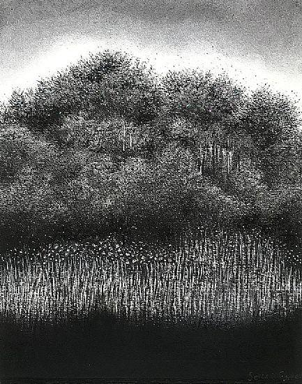 View Secret forest II