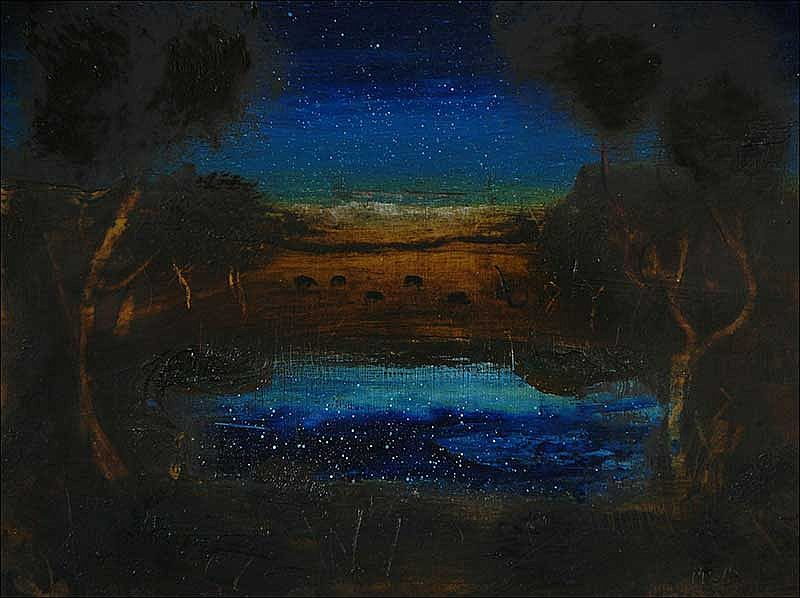 Brian McDonagh - Starry Pool
