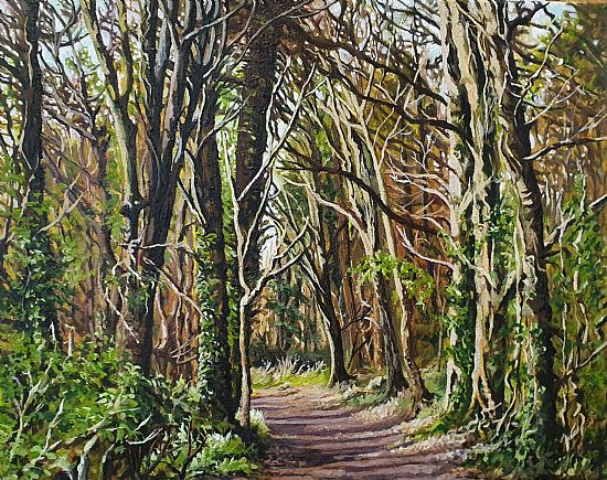 Geraldine O'Reilly Hynes - Through the woods