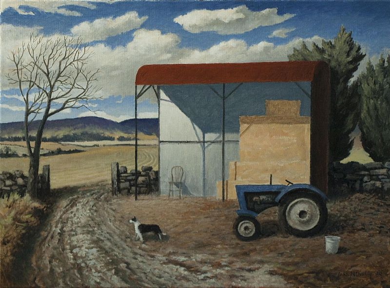 View Barn, tractor and sheepdog