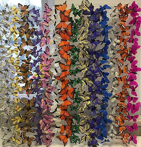 Michael Olsen - Butterfly Boxes