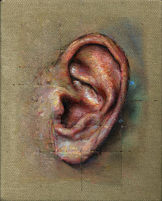 View Study of an Ear