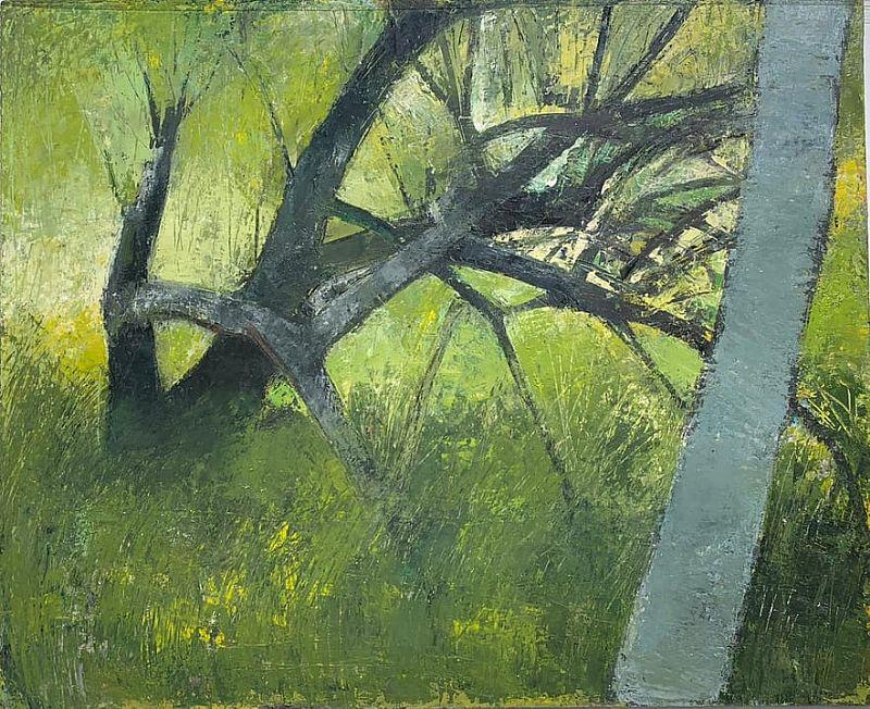 Fallen Apple Tree