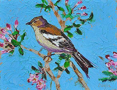 View Litlle bird