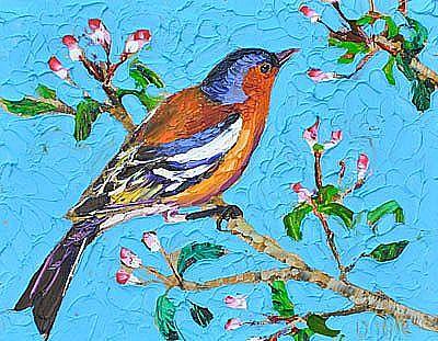 View Little bird II