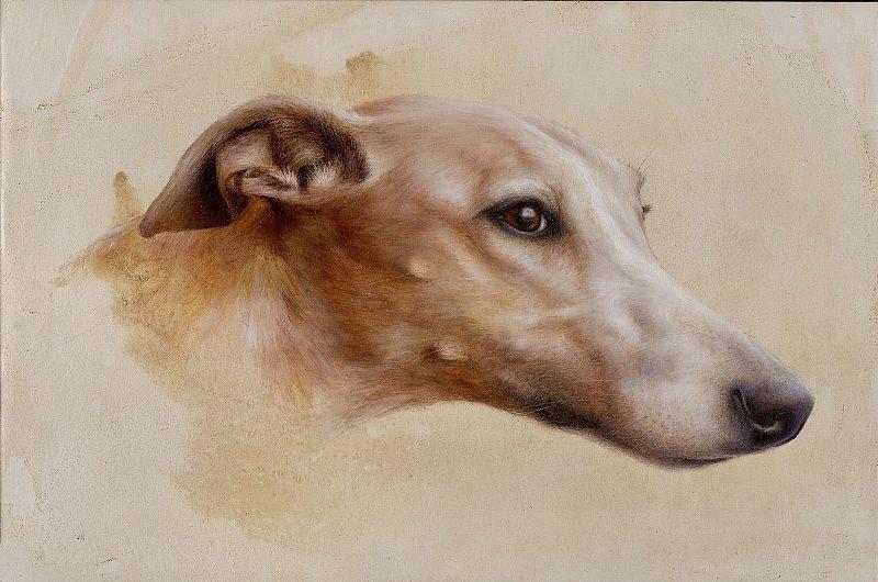View Sighthound