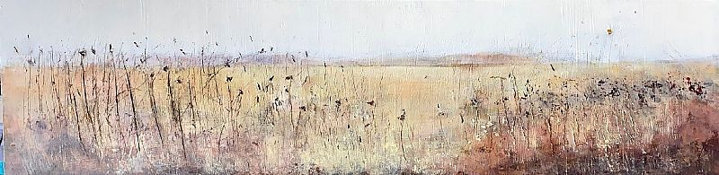 View Terra Incognita