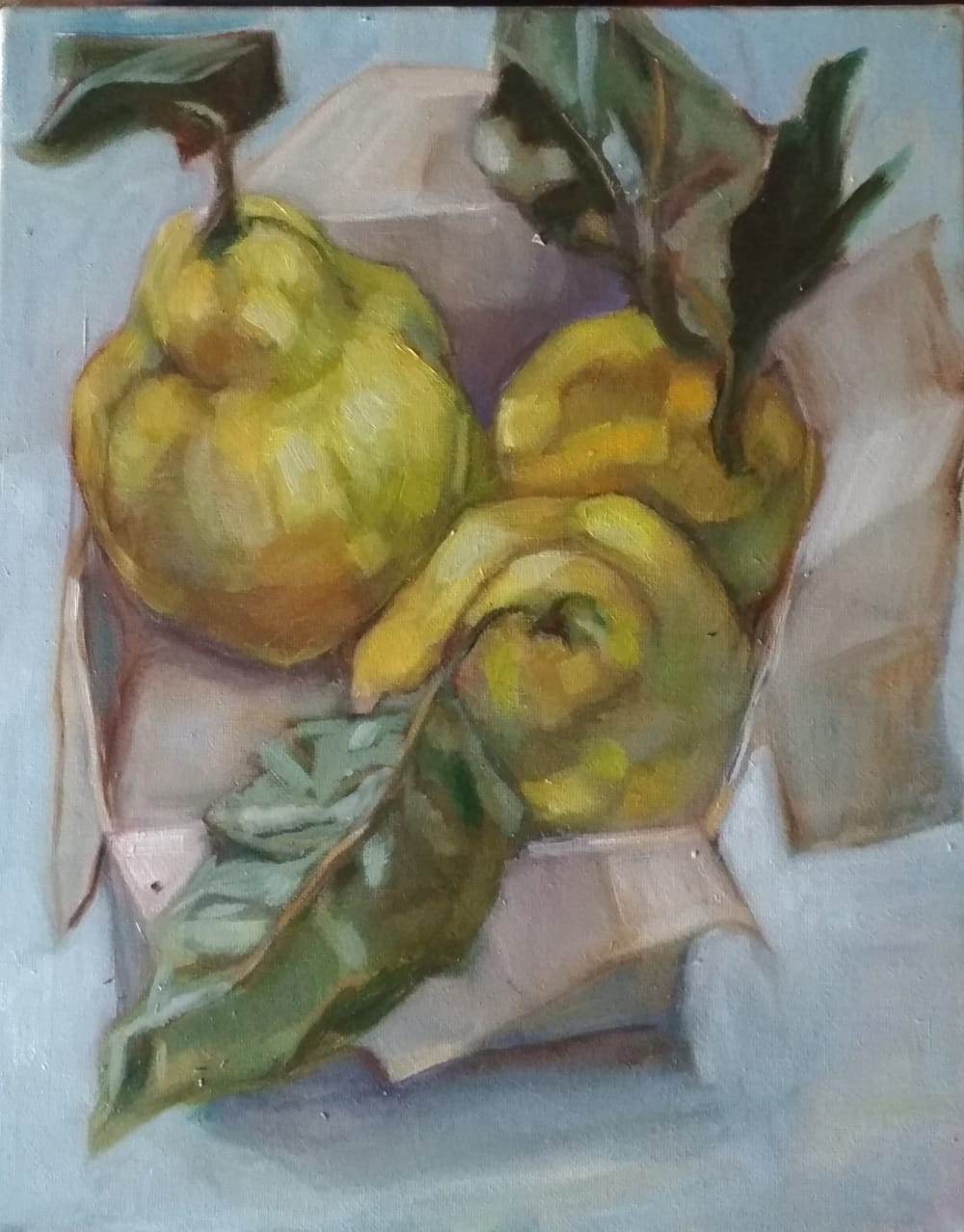 Three Quince by Daphne  Petrohilos