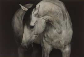 """The Equus Connection""  An exhibition of new paintings by Tony O'Connor"